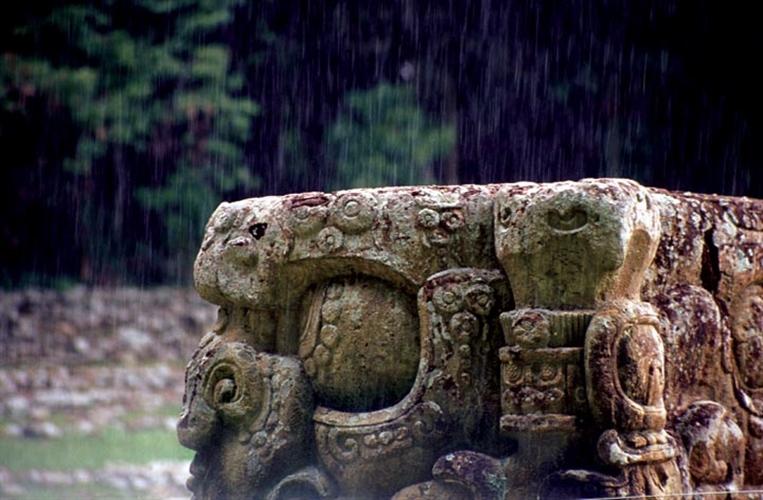 Copan Estela with Rain