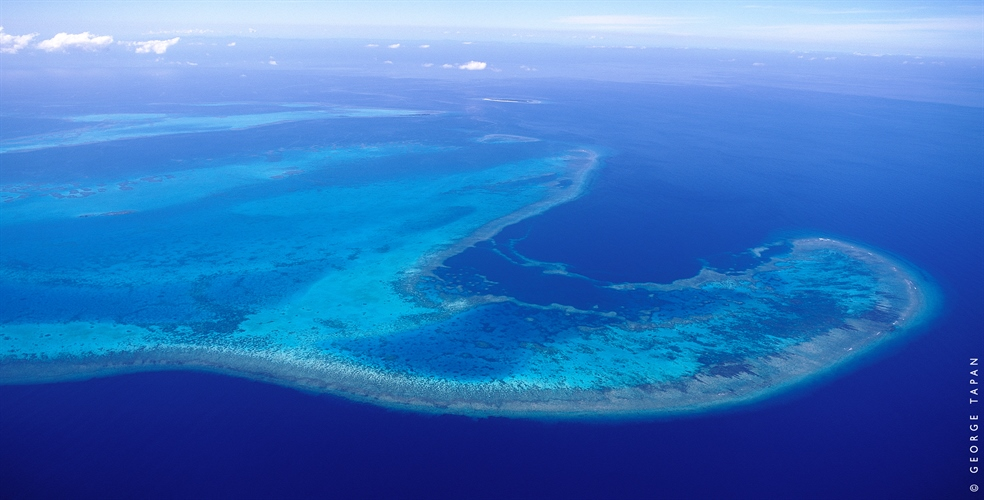 Aerial view of the reef