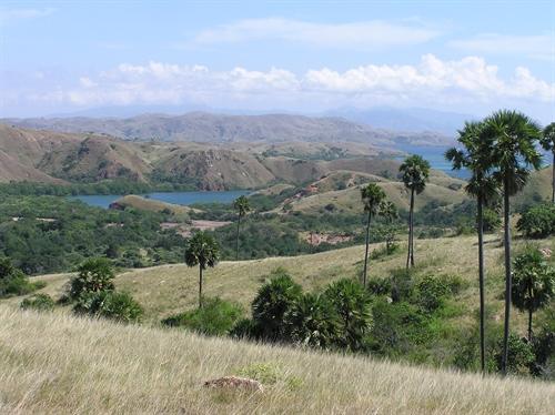 Komodo Landscapes