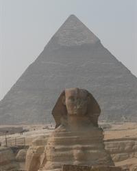 Cairo Delights