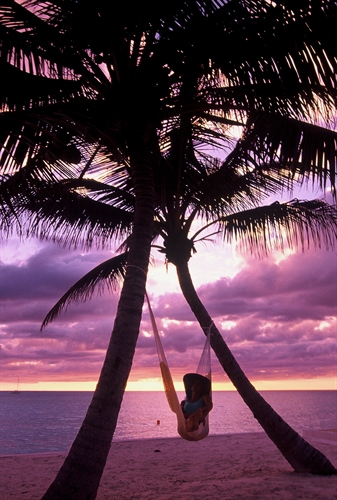 Sunset with Palm Trees