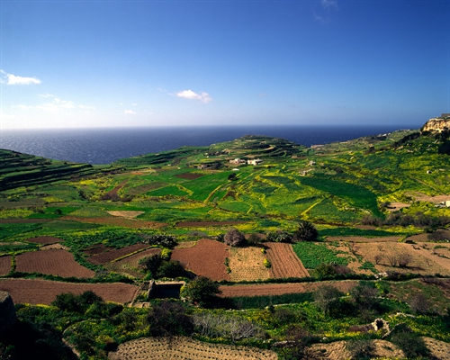Contry View in Gozo
