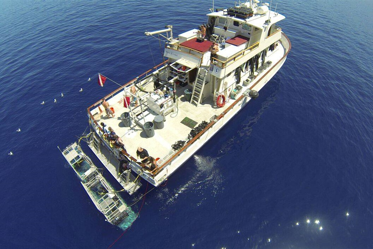 sideofboat