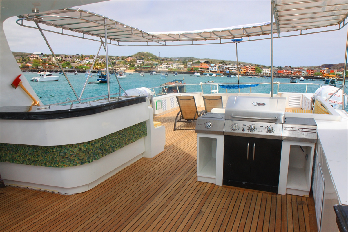 Sun deck and BBQ