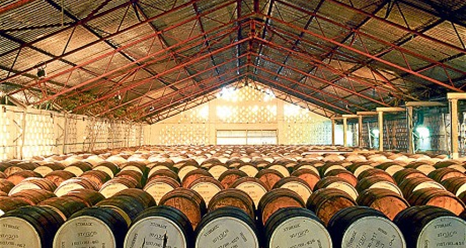 Mount Gay Rum Tour
