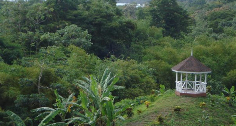 Tobago Cocoa Estate & Argyle Waterfall